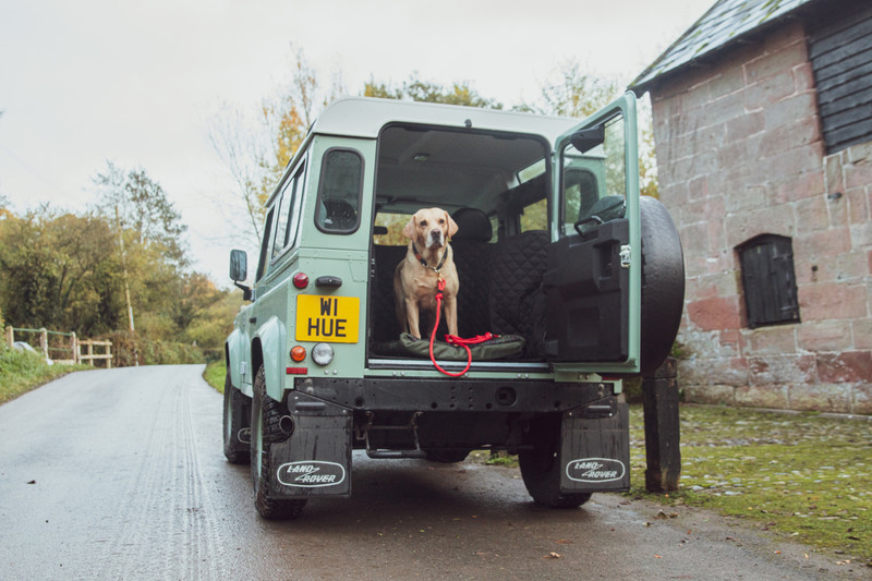 Hugo_and_Otto_Clemie_Flat_Dog_Cushion_Hunter_Labrador_Land_Rover_Defender_90_Heritage_Stretton_Water_mill_jpeg