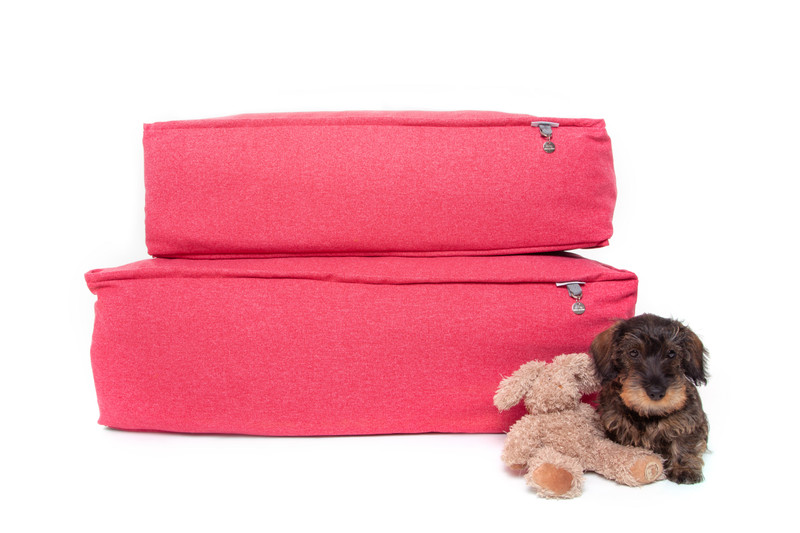 Lincoln_As_Nice_As_Pie_Cushion_Dog_Bed_Cerise_memory_foam_Lifestyle_Ottilie_For_Scale_png