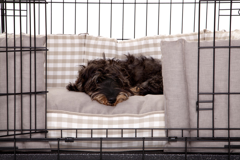 Hugo_and_Otto_Cosy_Dog_Crate_Dressed_with_Little_Tew_Cosy_Dog_Crate_Bolster_and_Cosy_Dog_Crate_Cushion_Lifestyle_Ottilie_Lettuce_ jpeg