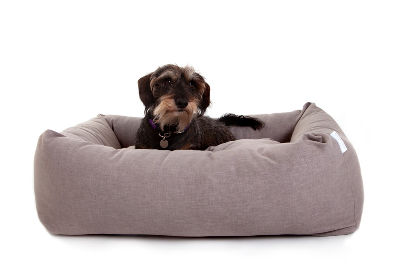 Hugo_and_Otto_Stow_Bolster_Dog_Bed_Cotwolds_Plains_Beige_Lifestyle_Finnbar_jpeg