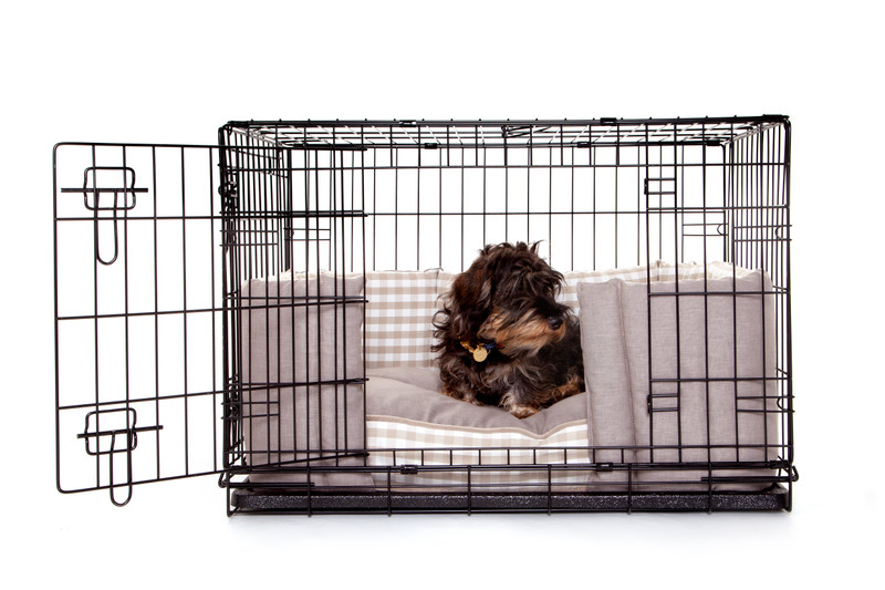 Hugo_and_Otto_Little_Tew_Dog_Crate_Cushion_&_Front_Door_Bumper_Lifestyle_Ottilie_(without_cover)_jpeg