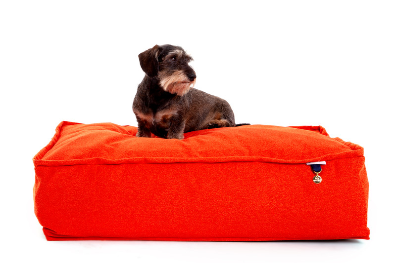 Hugo & Otto Continue To Innovate During COVID19 Launching 2 New dog Beds with our Unique 2 Tier Mattress System