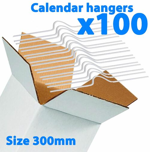 Galaxy 300mm Calendar Wire Hangers x 100