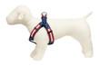 Americana Park Dog Harness-Americana Flag