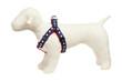 Americana Park Dog Harness-Stars