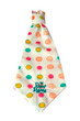 Modern Bliss Collection - BonBons - Neck Tie