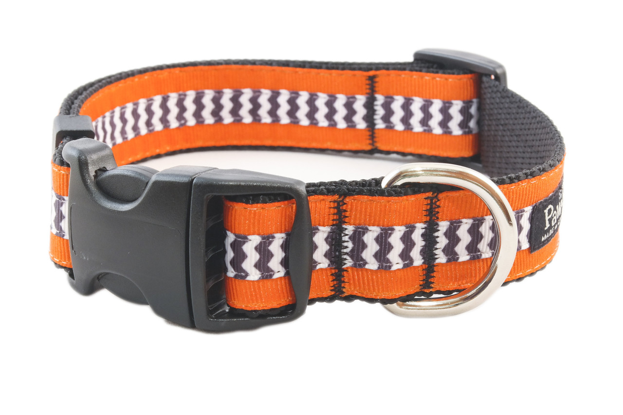 Halloween Dog Collar - Wicked Witch