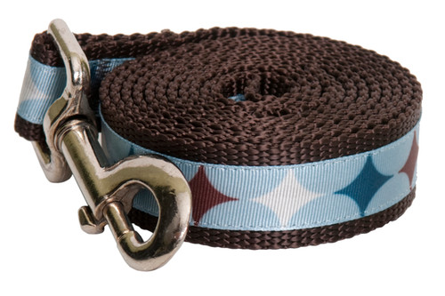 Chocolate Snow Cone Star Leash