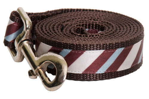 Chocolate Snow Cone Stripe Leash