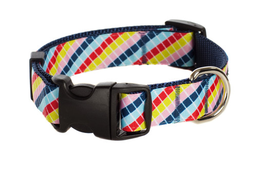 Bubble Gum Dog Collar - Mumbo Jumbo on Blue