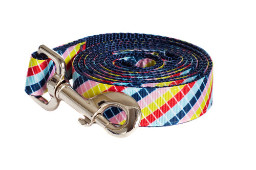 Bubble Gum Dog Leash - Mumbo Jumbo on Blue