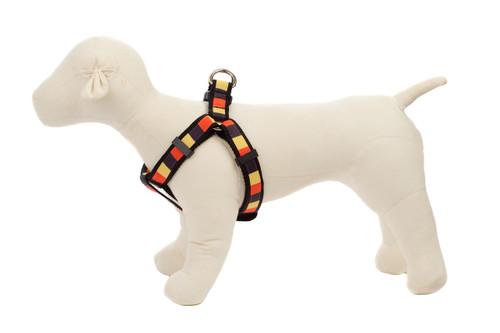 Halloween Dog Harness - Candy Corn Block