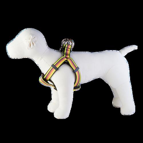 Margarita Mix Dog Harness-Mellow Yellow Stripe