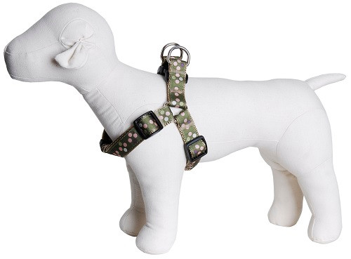 Sweet Pea Dog Harness - Pea Soup on Tan