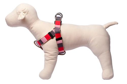 Yorkshire Dog Harness - Yorkshire Block on Tan