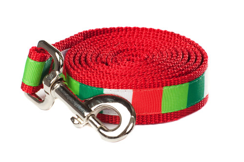 Christmas Morning Dog Leash - Be Merry Block