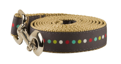 Retro Dog Leash - Robot Dot