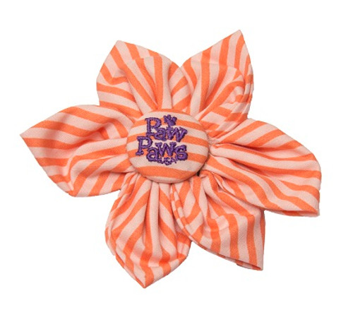 Southern Charm Collection - Orange Stripe - Blossom