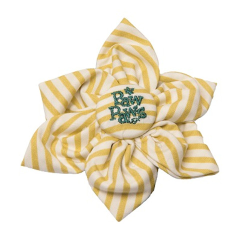 Southern Charm Collection - Chartreuse Stripe - Blossom