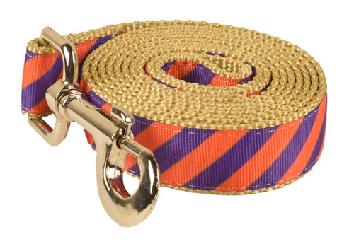 Collegiate - Clemson05 Dog Leash Tiger Rep Stripe