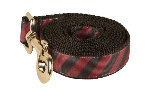 Collegiate - GameCocks06 Dog Leash Rep Pride Stripe