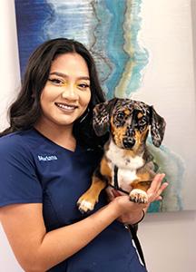 mariana silva lead dental assistant and dental lab coordinator