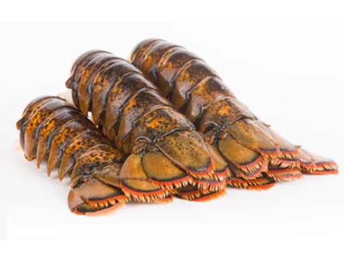 Maine Lobster Tails (4 to 5 oz)