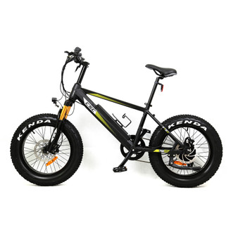 "FT750XP-20 Fat Tire E-Bike w/ 20"" Wheels - Black"
