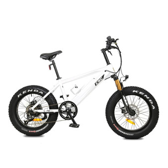 "FT750XP-20 Fat Tire E-Bike w/ 20"" Wheels - White"