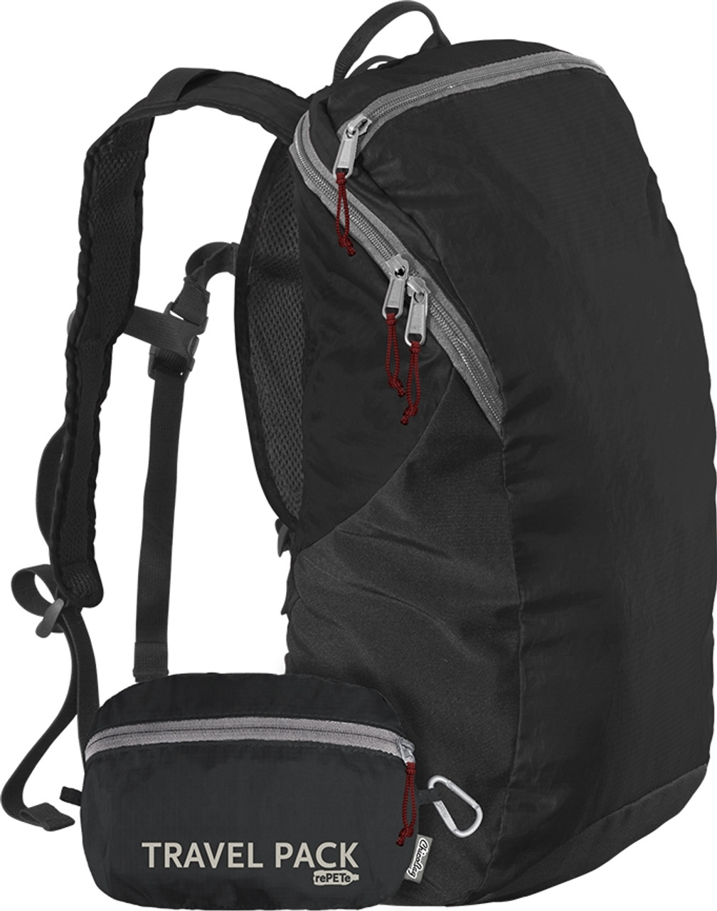 ChicoBag Travel Pack rePETe Pouchable Backpack