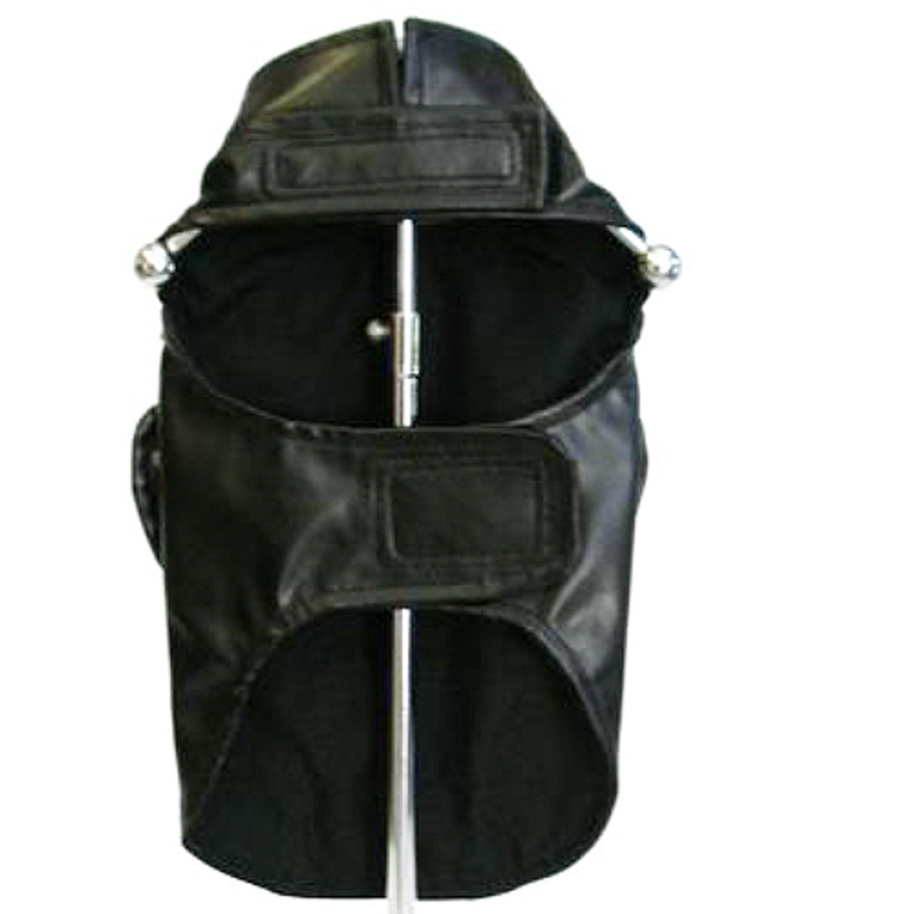 982110d54f50 Born to Ride Black Dog Biker Jacket