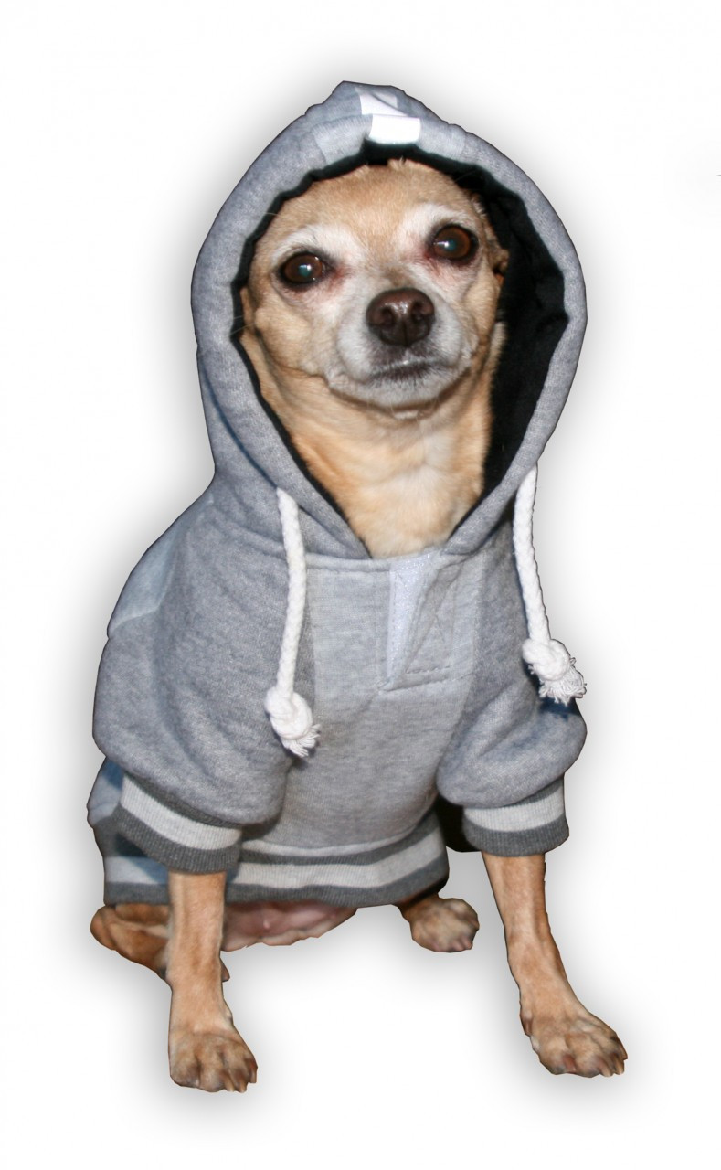 release date: 68cb9 1b5f0 NFL New England Patriots Dog Hoodie