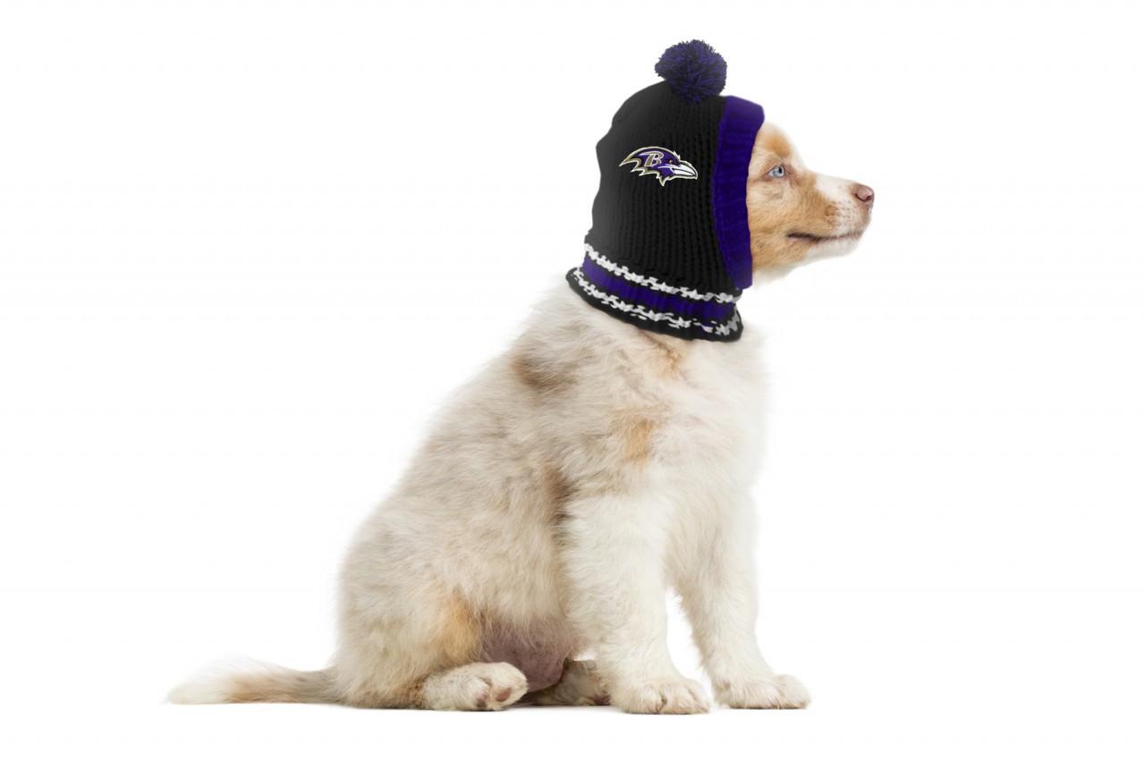 ... NFL Baltimore Ravens Dog Knit Ski Hat 7e3369d92