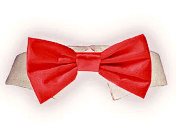 Dog Bow Tie - Red Satin