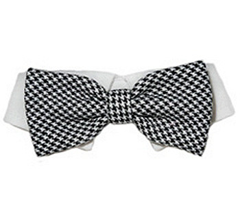 Dog Bow Tie - Michael