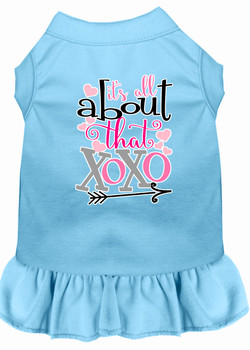 All About The Xoxo Screen Print Dog Dress - Baby Blue