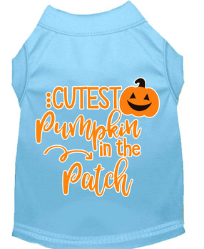 Cutest Pumpkin In The Patch Screen Print Dog Shirt - Baby Blue