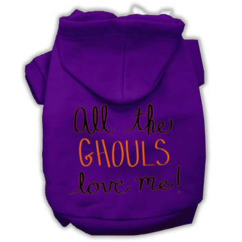 All The Ghouls Screenprint Dog Hoodie - Purple