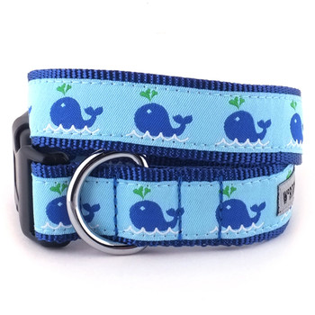 Squirt Pet Dog Collar & Lead