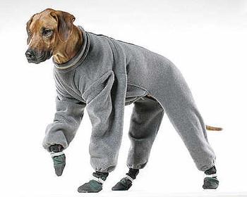 Dog Fleece Jogger by Muttluks