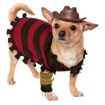 Freddy Krueger Pet Costume