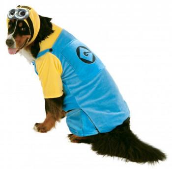 Big Dogs Minion Pet Costume