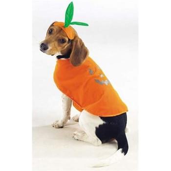 Pumpkin Pup Costume
