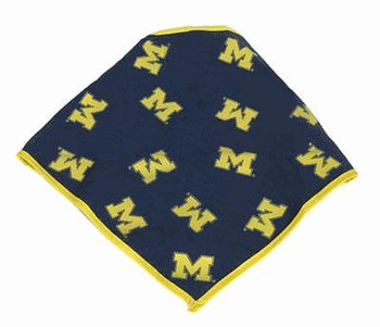 Michigan Wolverines Dog Bandana Style #2