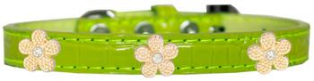 Gold Flower Widget Croc Dog Collar - Lime Green