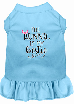 Bunny Is My Bestie Screen Print Dog Dress - Baby Blue