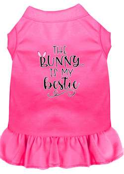 Bunny Is My Bestie Screen Print Dog Dress - Bright Pink