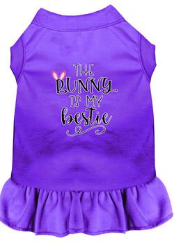 Bunny Is My Bestie Screen Print Dog Dress - Purple