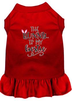 Bunny Is My Bestie Screen Print Dog Dress - Red