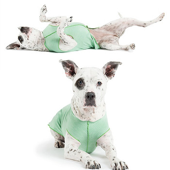 Sun Shield Pet Dog Tee - Pistachio Heather